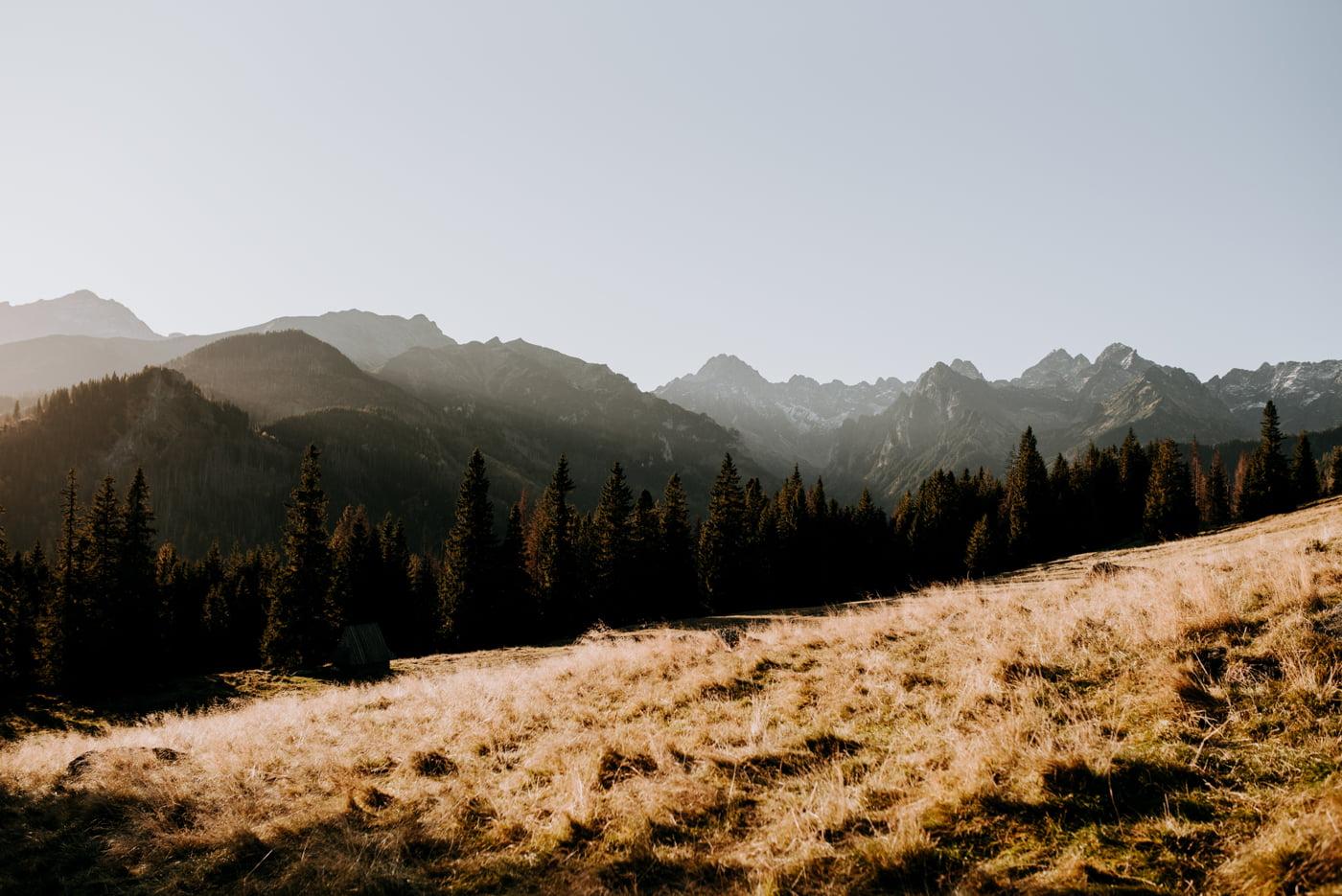 Sesja ślubna w Tatrach - Tradycyjnie 11